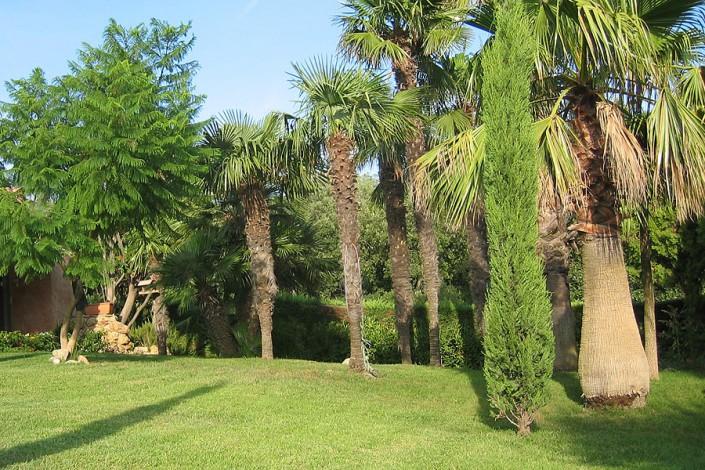 Basso jardins sainte maxime jardinier paysagiste ste for Jardins de jardiniers